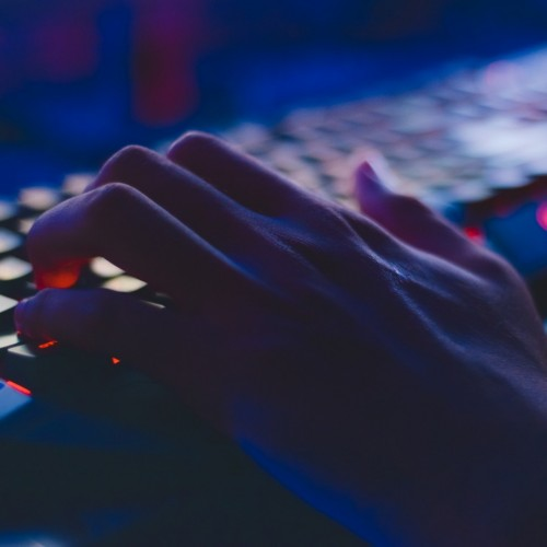 Reducing the Risk of Employee Computer Crime